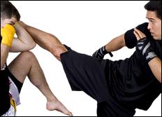 martial arts network